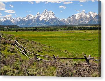 Grand Tetons With Buck And Pole Fence Canvas Print by Alan Lenk