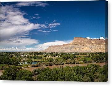 Grand Valley And Colorado River Canvas Print by Teri Virbickis