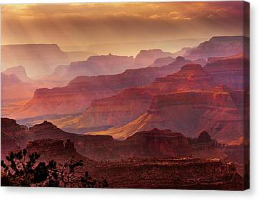Grand Canyon National Park Canvas Print - Grandeur by Mikes Nature