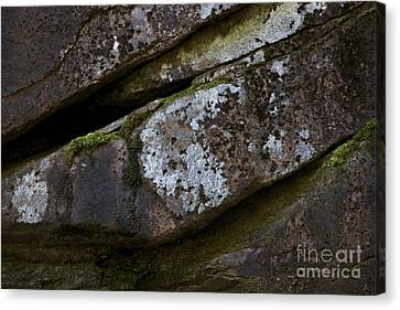 Granite Rock Close Up Canvas Print