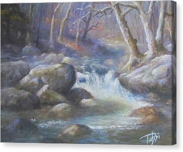 Granite Run Canvas Print