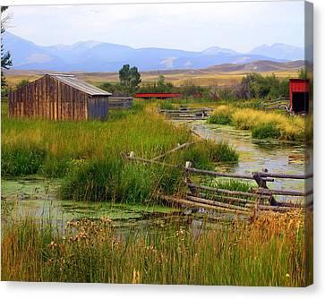Grant Khors Ranch Deer Lodge  Mt Canvas Print by Marty Koch