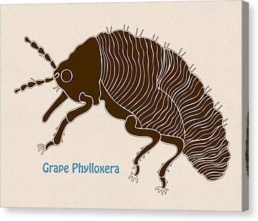 Grape Phylloxera Canvas Print by Frank Tschakert