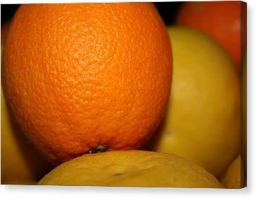 Grapefruit Orange Canvas Print by Joshua Sunday