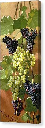 Grape Vines Canvas Print - Grapes by Edward Chalmers Leavitt