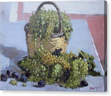 Grapes From Kostas Garden Canvas Print by Ylli Haruni