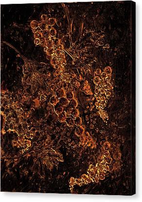Grapes On The Vine Gold Art Canvas Print by Ken Figurski