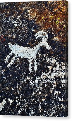 Bighorn Canyon National Recreation Area Canvas Print - Grapevine Canyon Bighorn Sheep Petroglyph by Kyle Hanson