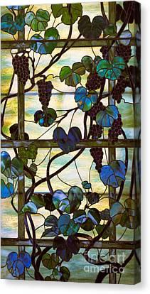 Grapevine Canvas Print