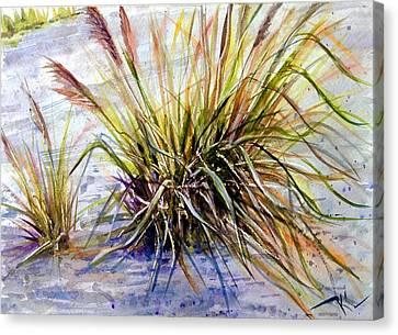 Grass 1 Canvas Print