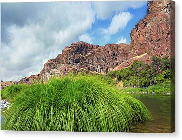 Canvas Print - Grass Along John Day River In Central Oregon by David Gn