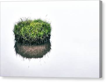 Abstract Nature Canvas Print - Grass Island by Joana Kruse