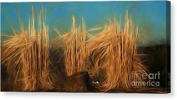 Kathy Rinker Canvas Print - Grass by Kathleen Rinker