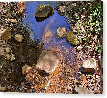 Grass Valley Creek Ca Canvas Print