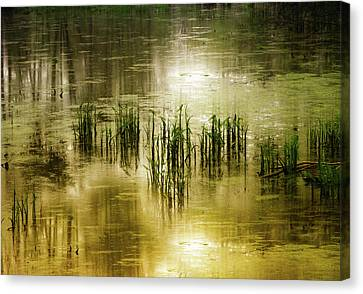 Canvas Print featuring the photograph Grassland Abstract by Jessica Jenney