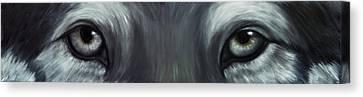 Gray Wolf Eyes Canvas Print
