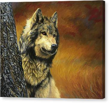 Gray Wolf Canvas Print by Lucie Bilodeau