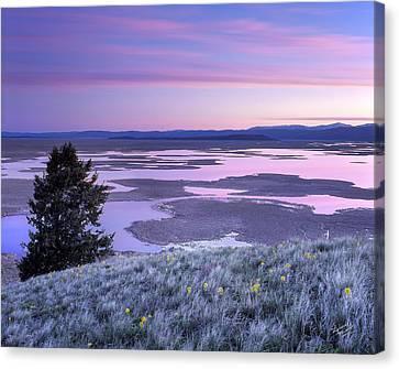 Grays Lake Sunrise Canvas Print by Leland D Howard