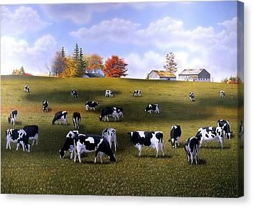 Grazing Holsteins Canvas Print by Conrad Mieschke
