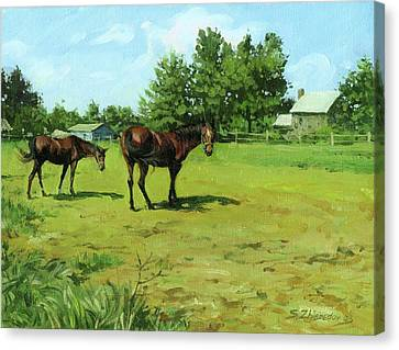 Grazing Horses Canvas Print by Sergey Zhiboedov