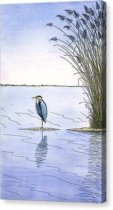 Great Blue Heron Canvas Print by Charles Harden