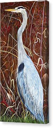 Great Blue Heron Canvas Print by Marilyn  McNish