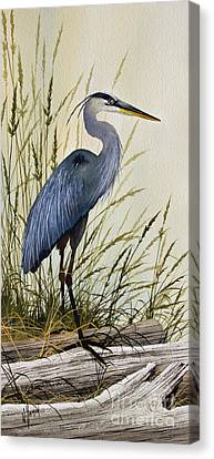 Great Blue Heron Canvas Print - Great Blue Heron Splendor by James Williamson