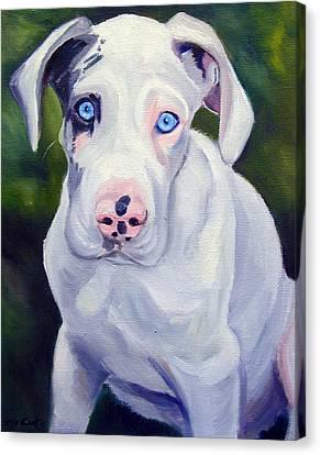 Great Dane Harlequin Puppy Canvas Print