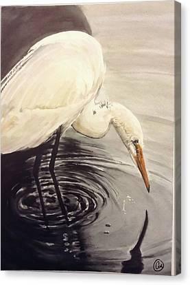 Great Egret , Mirror Canvas Print