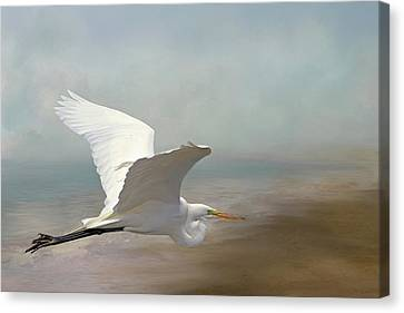 Great White Heron Canvas Print - Great Egret by Donna Kennedy