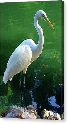 Canvas Print featuring the digital art Great Egret by Timothy Bulone