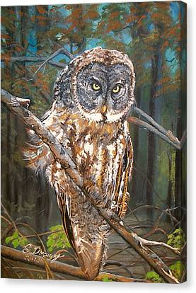 Great Grey Owl 2 Canvas Print by Sharon Duguay