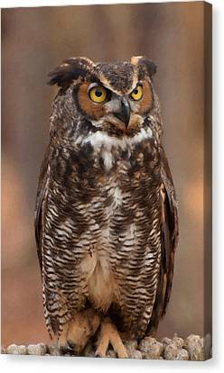 Canvas Print featuring the digital art Great Horned Owl Digital Oil by Chris Flees