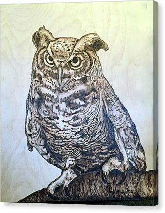 Great Horned Owl Canvas Print by James Pinkerton