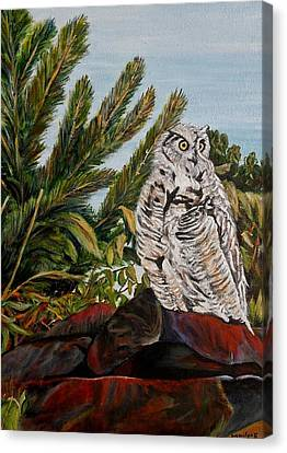 Great Horned Owl - Owl On The Rocks Canvas Print by Marilyn  McNish