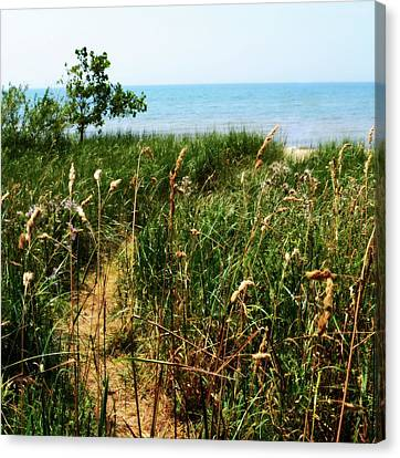 Canvas Print featuring the photograph Great Lake Beach Path by Michelle Calkins