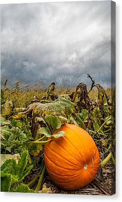 Great Pumpkin Off Center Canvas Print by Wayne King