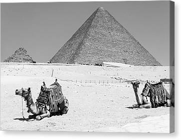 Canvas Print featuring the photograph great pyramids of Giza by Silvia Bruno