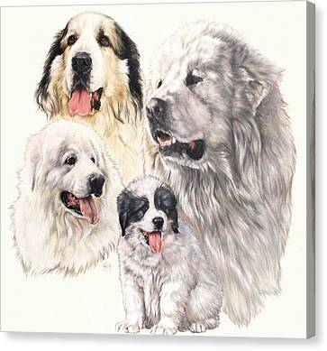 Working Dog Canvas Print - Great Pyrenees by Barbara Keith