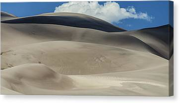 Great Sand Dunes National Park II Canvas Print by Greg Reed