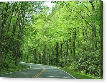 Smokey Mountain Drive Canvas Print - Great Smokey Mountains by Karen Ruhl