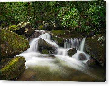 Great Smoky Mountains Gatlinburg Tn Roaring Fork Waterfall Nature Canvas Print by Dave Allen