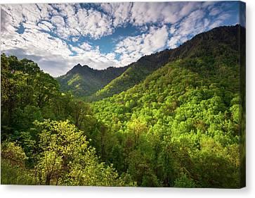 Gatlinburg Tennessee Canvas Print - Great Smoky Mountains Gatlinburg Tn Spring Scenic Landscape by Dave Allen