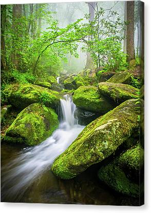 Great Smoky Mountains Tn Misty Roaring Fork Canvas Print by Robert Stephens