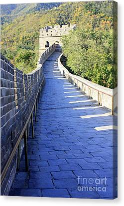 Great Wall Pathway Canvas Print by Carol Groenen