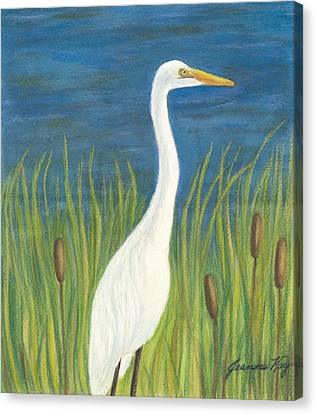 Great White Egret By Pond Canvas Print by Jeanne Kay Juhos