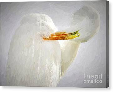 Canvas Print - Great White Egret Van Gogh by Paulette Thomas
