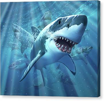 Canvas Print - Great White Shark by Jerry LoFaro
