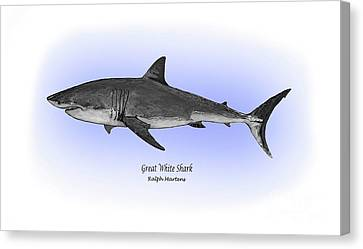 Great White Shark Canvas Print by Ralph Martens