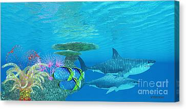 Sea Anenome Canvas Print - Great White Shark Reef by Corey Ford